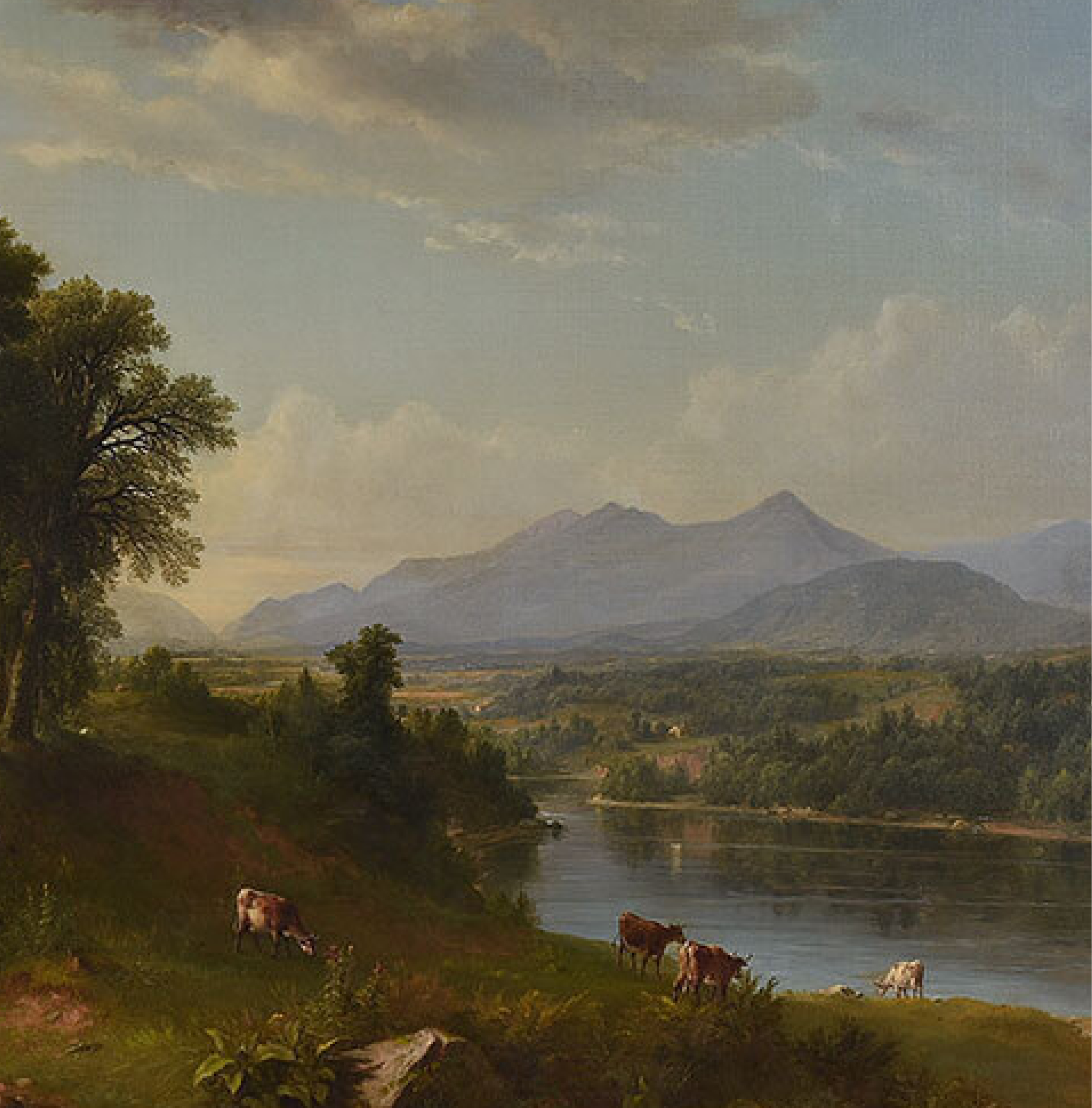 SOLD: $516,600 Asher Brown Durand
